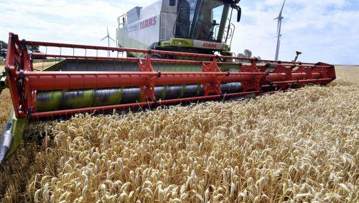 Pays producteurs Agricoles en Europe